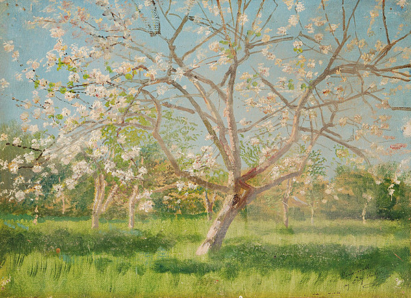 Ladislav Mednyánszky: Study of Blooming Trees in an Orchard (1900/1910)